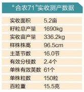 """这个大豆新品种成为新""""东北王"""""""