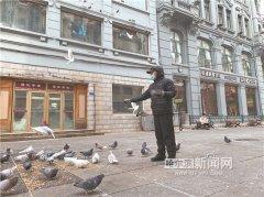 """300多只鸽子在中央大街""""吃大餐"""""""